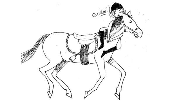 progres-equitation