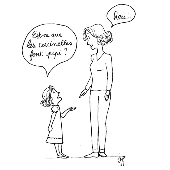coccinelle.jpg