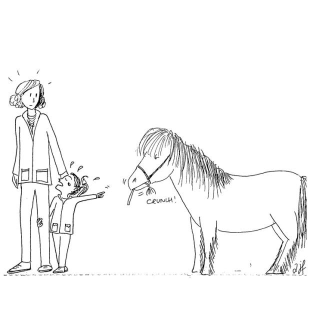 fleur à poney 2